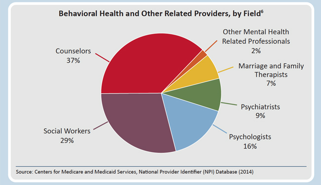 behavioral health and other related providers, by field