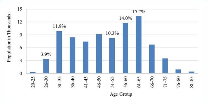 2005-13: Demographics of the U.S. Psychology Workforce