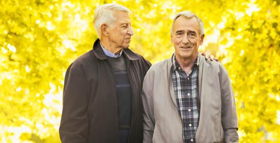 Cognitive development in older adulthood 65+ dating