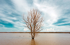 Climate change is threatening mental health