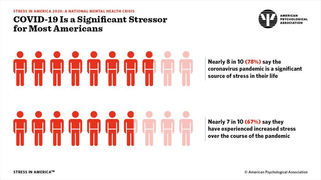 2020 Stress In America Graphs English Data Charts