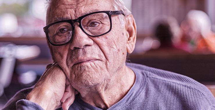 Cognitive Aging Efforts