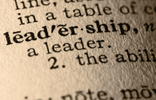 Leadership in the dictionary