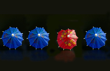 Little umbrellas for drinks