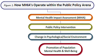 MHIAs and Public Policy